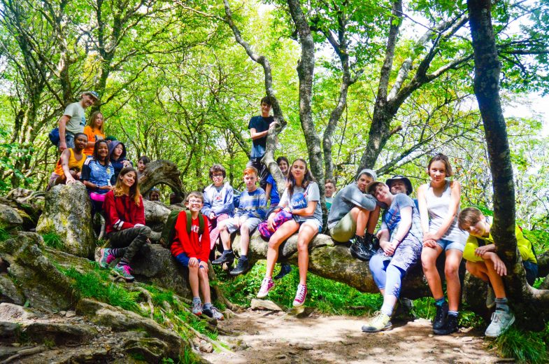 Middle School Class Students Gather Among Trees for Integral Education